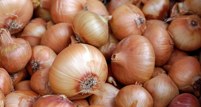 Deumidificatori d'aria per la corretta conservazione di aglio e cipolla