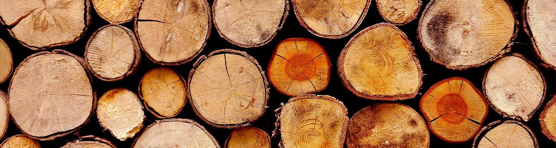 Deumidificatori per depositi di legname